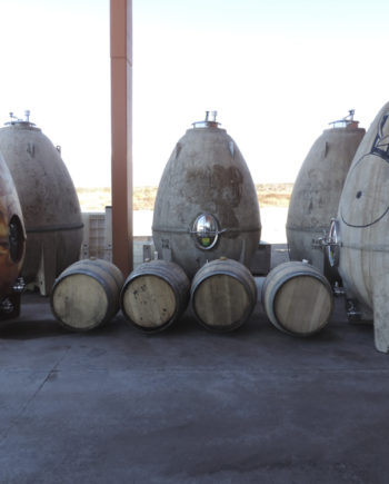 Concrete egg shaped tanks and wine barrels at Zorzal Winery